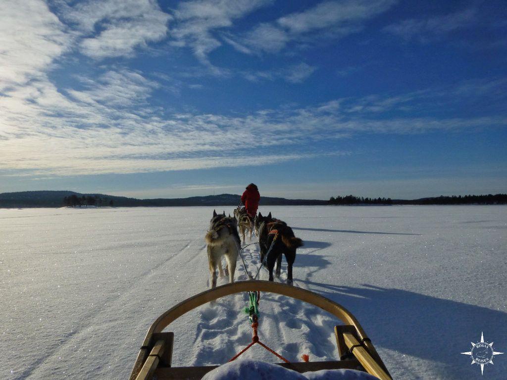 Huskysafari auf dem Inari-See