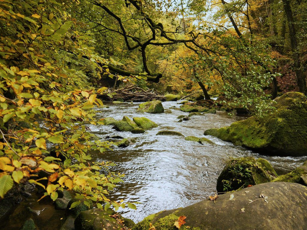 Eifel im Herbst