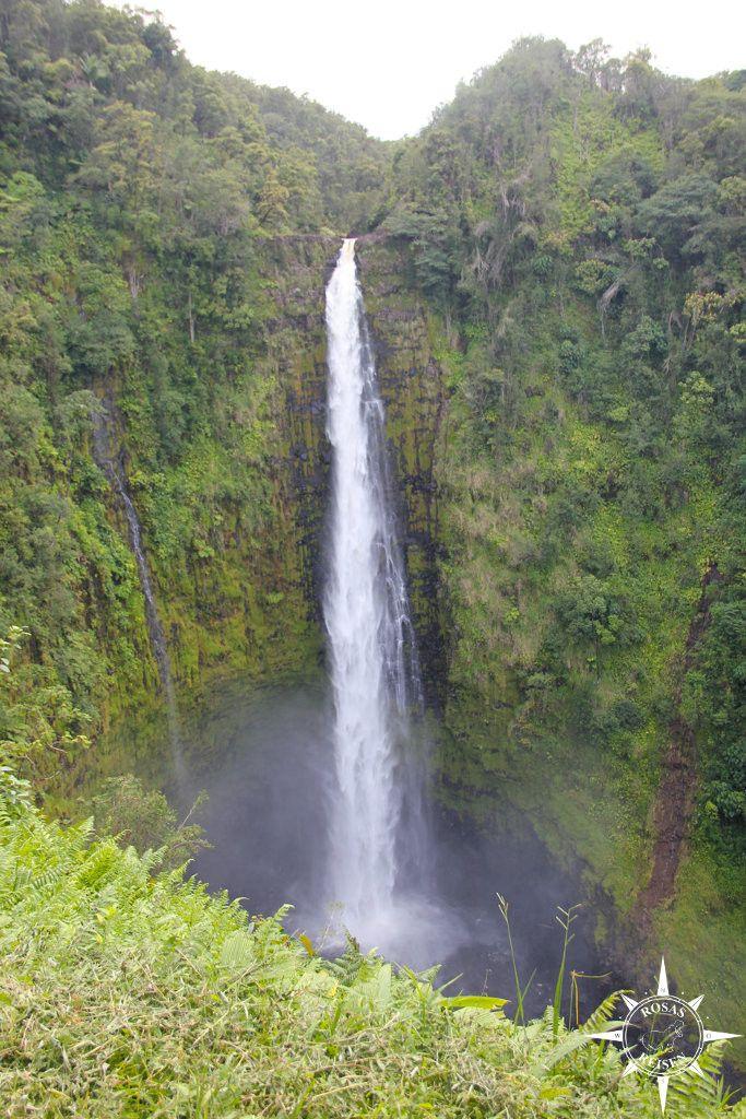 Big Island (8)