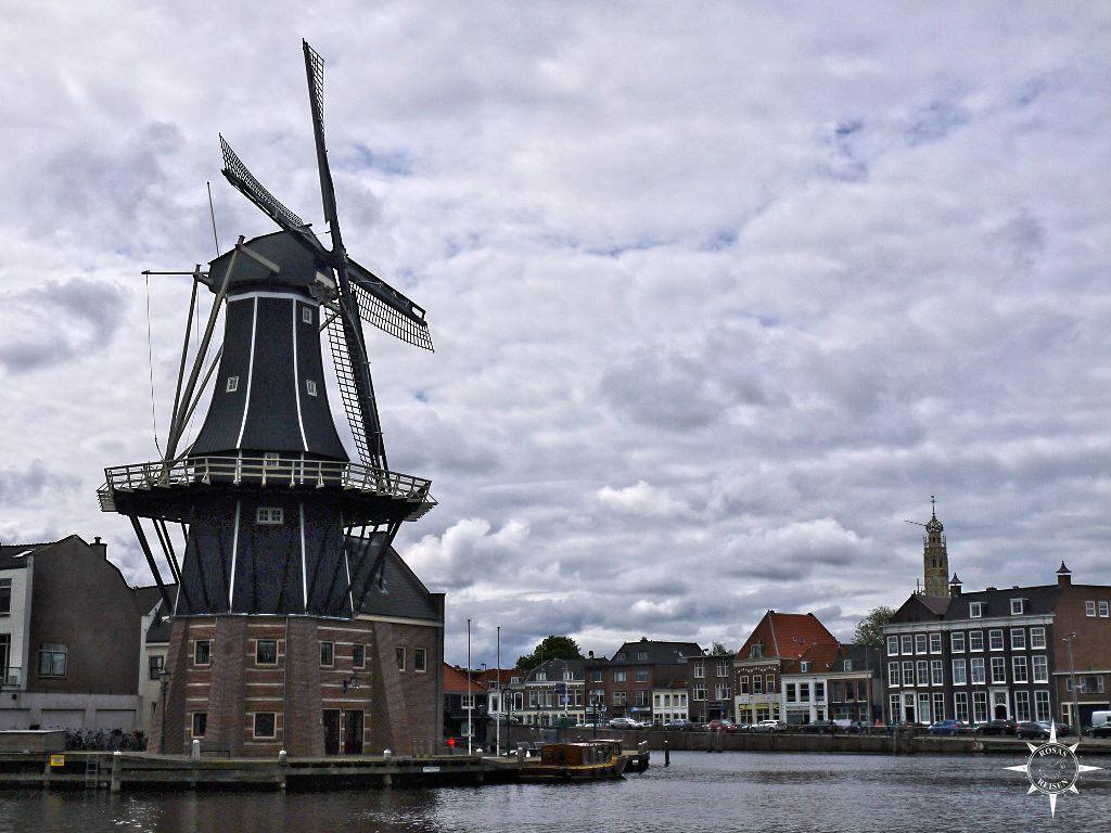 Haarlem (48)