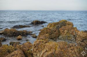 east-lothian-coast-walk-12