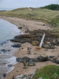 east-lothian-coast-walk-3