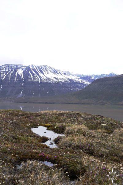 Groenland-Rosas-Reisen-Tundra-Inuksuk (18)